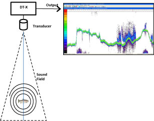 Digital Scientific Echosounder